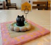 露天風呂にはいる黒猫