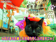黒子とハロウィン2013