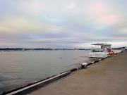 館山港でパシャリ