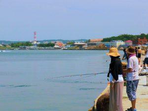 ソーダガツオ狙いの釣人で賑わう館山港の様子